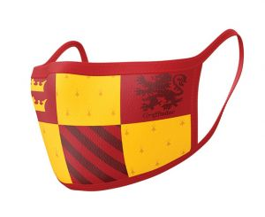 Harry Potter: Gryffindor Face Mask (Pack of 2)