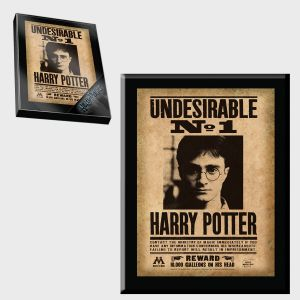Harry Potter: Harry Potter Undesirable Plaque Preorder