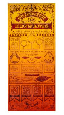 Harry Potter: Quidditch At Hogwarts Limited Edition Art Print